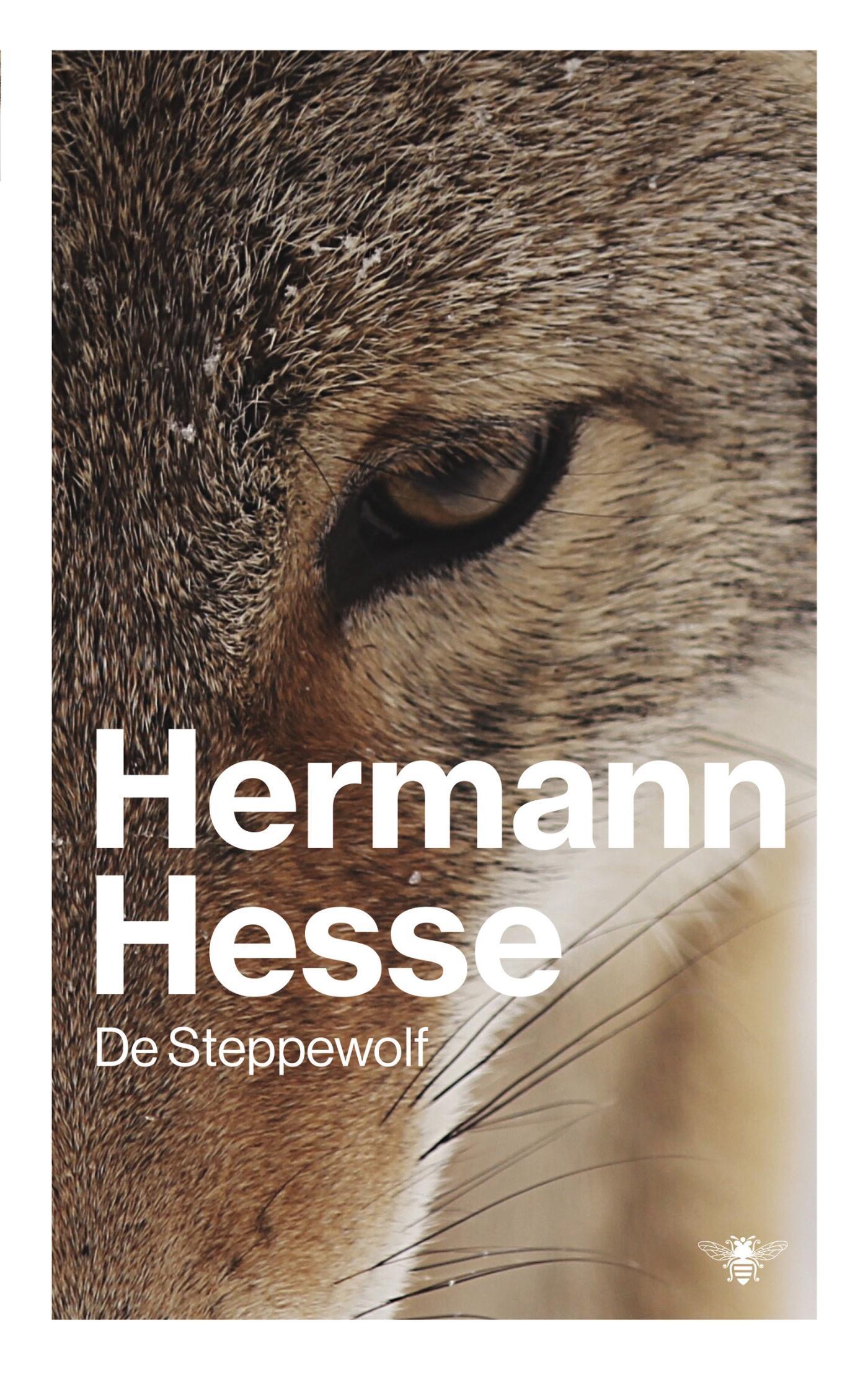 De steppewolf - boekrecensie