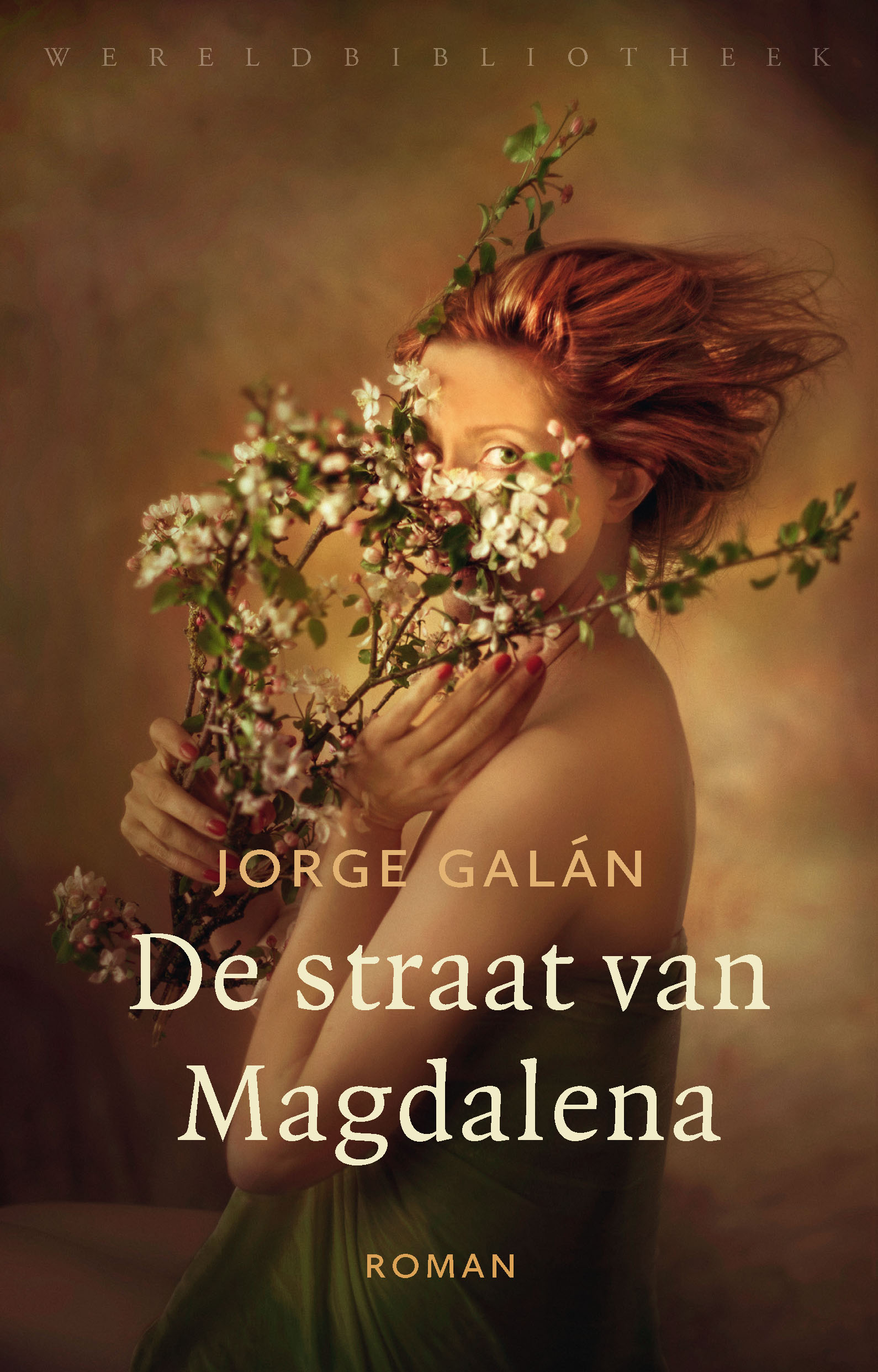 De straat van Magdalena - boekrecensie